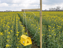 Farmers Need Time to Get Used to Software – Agro IT project in Poland